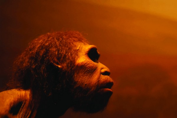 Exposition : Les temps préhistoriques
