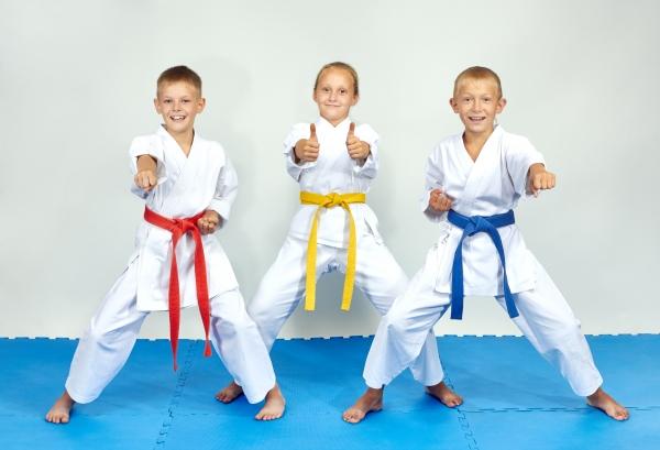 Portes ouvertes des arts martiaux
